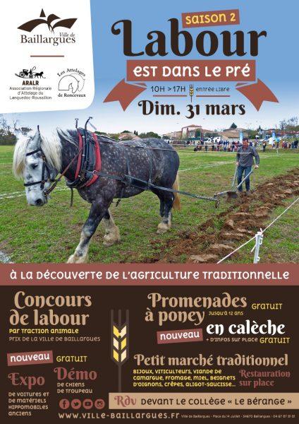a3_concours-de-labour2019